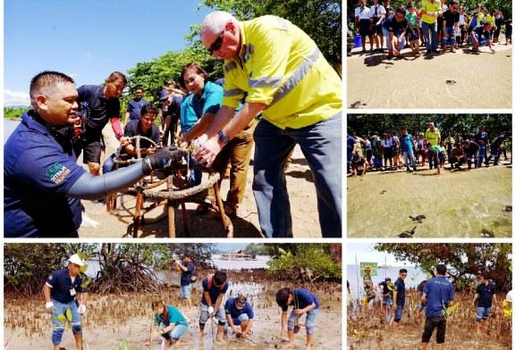 Peringati Hari Lingkungan Hidup, PT MSM Tanam Mangrove dan Lepas Penyu