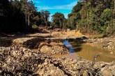 Merusak Lingkungan, SCW Minta PETI Mitra Ditertibkan