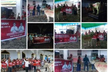 Rayakan Idul Adha, JG-KWL Sumbang 21 Hewan Sapi Kurban untuk Masjid di Minut