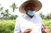 Berkat Lobi Gubernur Olly, Kini Tarif Efektif PPN Produk Pertanian Turun Menjadi 1 Persen